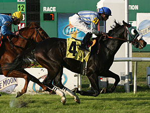 "Strike Again wins the 2010 ""Buddy"" Diliberto Memorial Handicap."
