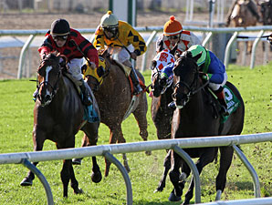 String King wins the 2012 Louisiana Champions Day Turf Stakes.