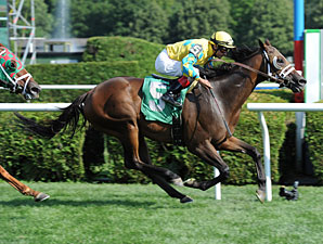 Strong Impact win the 2013 Fiddlers Patriot Stakes.