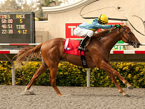 Strong Wind wins the 2012 Graduation Stakes.