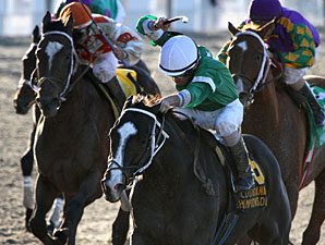 Su Casa G Casa wins the 2012 Louisiana Champions Day Sprint Stakes.