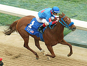 Sugar Shock wins the 2014 Fantasy Stakes.