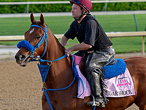 Sugar Shock preps for the Kentucky Oaks April 27.