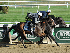 Summer Applause - Belmont Work, October 26, 2013.