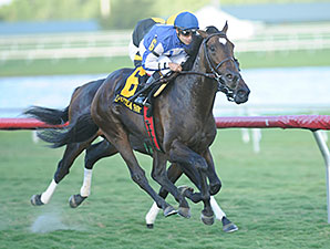 Summer Front wins the 2014 Ft. Lauderdale Stakes.