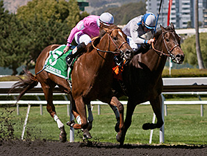 Summer Hit wins the All American Stakes.
