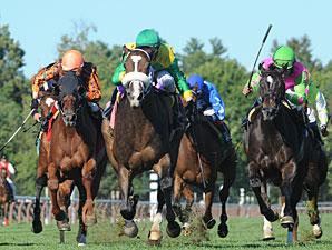 Summer of Fun wins the 2013 Auntie Mame Stakes.