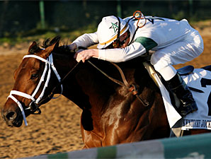 Super Saver wins the 2009 Kentucky Jockey Club.