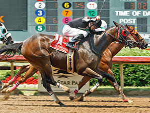 Supreme Secret and Southern Vintage dead heat in the 2010 Carter McGregor Jr Memorial Stakes