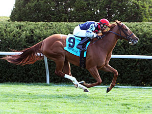 Sweet Cassiopeia wins the 2013 Giant's Causeway.