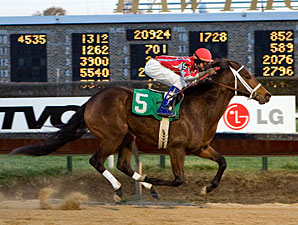 Sweet Lemon Chello wins the 2009 Pat Whitworth Illinois Debutante.