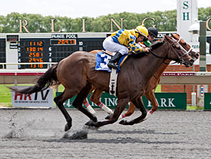 Sweet Luca wins the 2013 Addison Cammack Handicap.