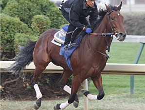 Switch works at Churchill Downs on October 24, 2010.