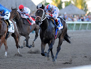 Tackleberry wins the 2011 Sunshine Millions Classic.