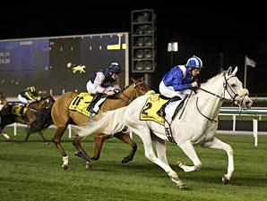 Tamaathul wins the 2013 Dubai Duty Free Millennium Millionaire Handicap.
