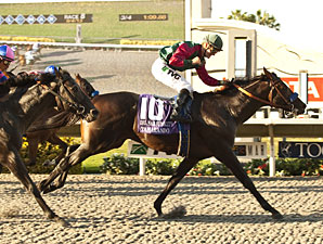 Tamarando wins the Del Mar Futurity.