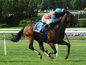 Tannery wins the 2013 Sheepshead Bay.