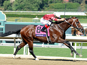 Tapizar in the Breeders' Cup Dirt Mile.