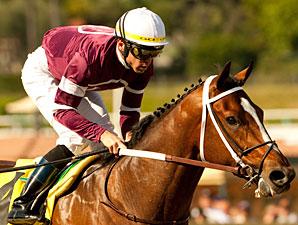 Tapizar wins the 2011 Sham.