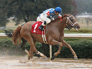 Taptam wins the 2010 Pippin Stakes.