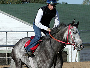 Taptowne at Oaklawn on April 12, 2013