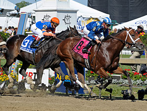 Taqarub wins the 2010 Maryland Sprint.