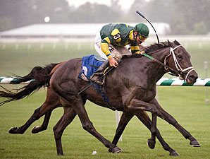Target Sighted wins the 2009 Humphrey S. Finney Stakes.