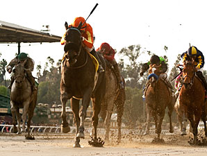 Teddy's Promise wins the 2013 Santa Monica.