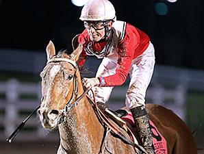 Tensas Harbor wins the 2015 LA Bred Premier Night Distaff Stakes.