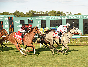 Testa Rossi (left) wins the 2015 Lambholm South Endeavour Stakes (via DQ).