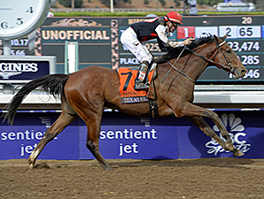 Texas Red wins the 2014 Sentient Jet Breeders' Cup Juvenile.