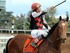 Texas Red wins the 2014 Breeders' Cup Juvenile.
