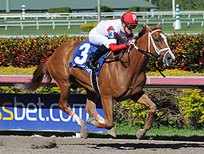 Thank You Marylou wins the Any Limi Stakes March 9, 2014.