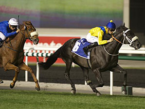 The Apache wins the 2013 Al Rashidiya.