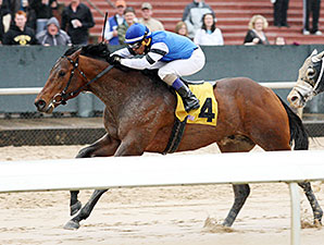 The Big Beast - Allowance Win at Oaklawn, March 1, 2015.