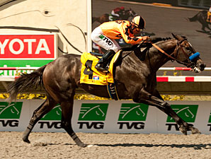 The Factor wins the Pat O'Brien