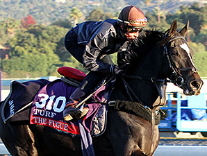 The Fugue on the turf course at Santa Anita Park on October 31, 2013.