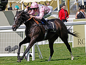 The Fugue wins the Prince of Wales's Stakes at Royal Ascot June 18.