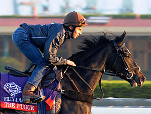 The Fugue - Breeders' Cup 2012