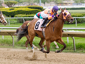 Third Chance wins the 2012 Governor's Lady Handicap.