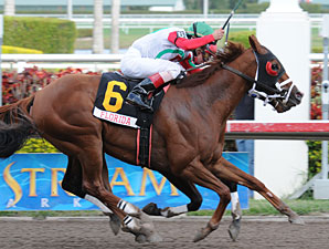 This Ones For Phil wins the 2010 Sunshine Millions Sprint.