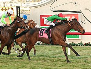 Three Hearts wins the 2014 Red Carpet Handicap.