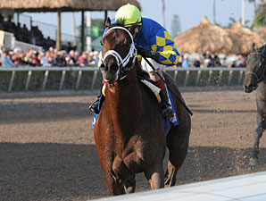 Thunder Moccasin wins the 2012 Hutcheson.
