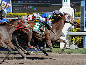 Tiban wins the 2012 Claiming Crown Express.