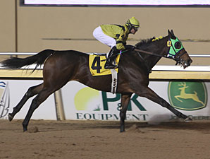 Tickleyourfancy - Allowance win, December 7, 2011.
