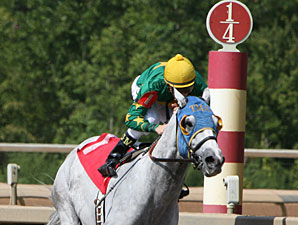 Tidal Volume wins the 2011 Temperance Hill.