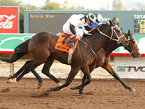 Tie Rod wins the 2009 Hank Mills Sr. Handicap.