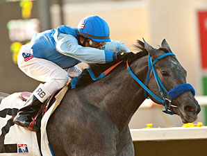 Tilde wins the 2012 C.T.B.A. Stakes.