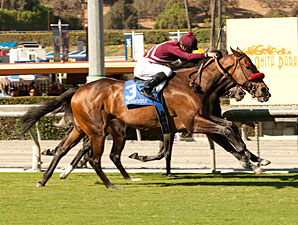 Tiz Flirtatious wins the 2013 Rodeo Drive.