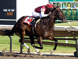 Tizaqueena wins the 2010 Arlington Matron.